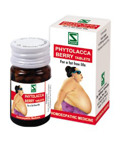 Dr.Willmar's Phytolacca Berry Tablets For An Effective Weight Loss Treatment