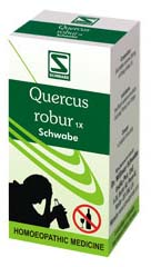 Homeopathic QUERCUS ROBUR 1X